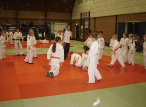 Houvast Judotoernooi Mierlo